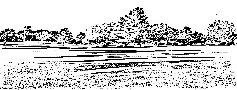 ServicesPage Image 1